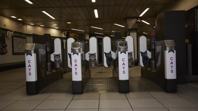 station_entrance
